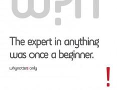 expert beginner